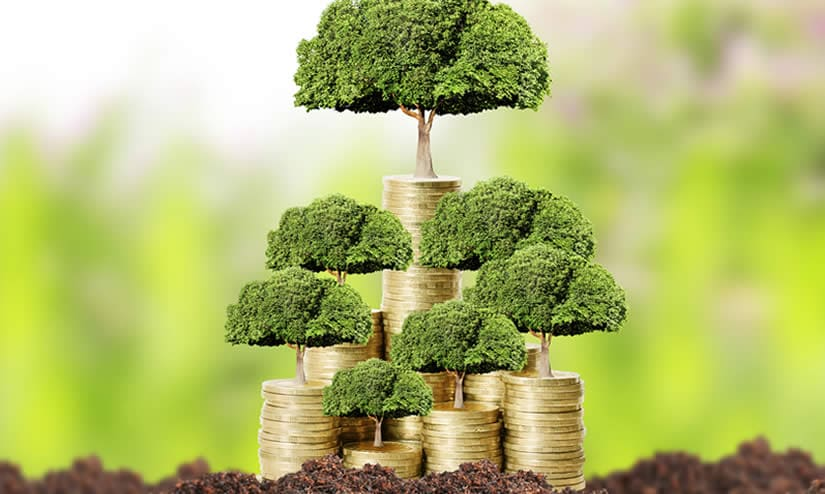 trees growing from money